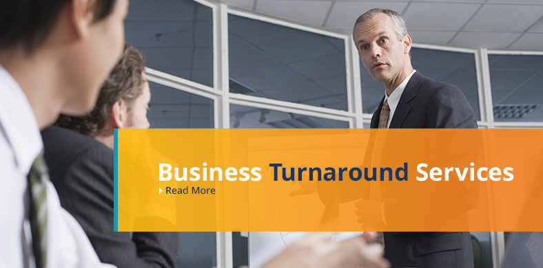 Round Rock Business Consultant